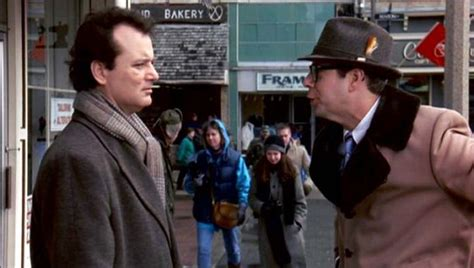 groundhog day ned bill murray classic groundhog day to be adapted into a