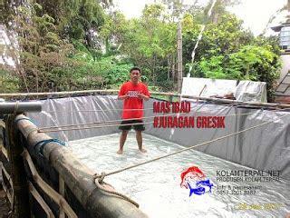Terpal Kolam Persegi Murah 4 ternak ikan lele kolam terpal pemula kolam terpal lele