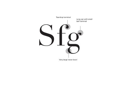 typography ear modern typeface