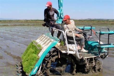 Mesin Tanam Padi 3 alat pertanian modern yang bisa digunakan di indonesia