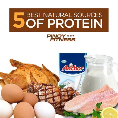 sources of protein 5 best sources of protein fitness