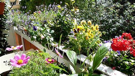 Winterharte Kübelpflanzen Für Terrasse 794 balkon begr 252 nen 5421 made house decor