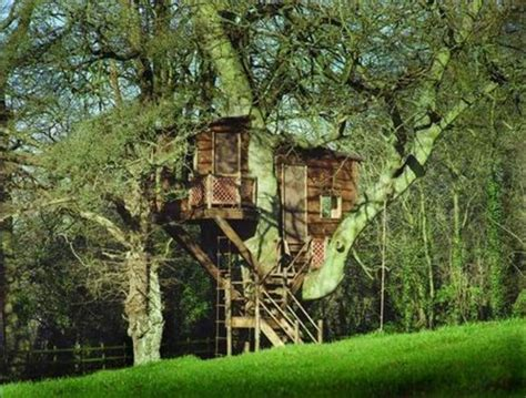 large tree house plans make your own magical tree house plans design tree house design plan ideas home design