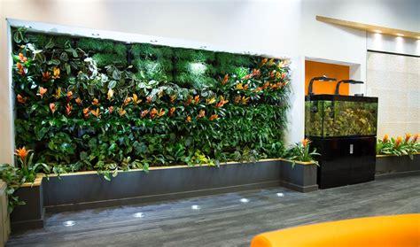 living wall uk oasis plants