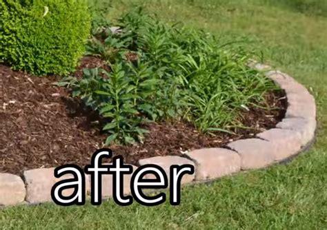 Landscape Edging No Dig Easy Do It Yourself No Dig Edging Garden Club