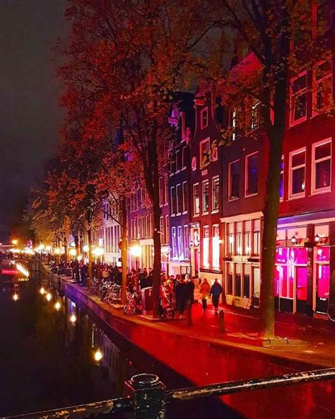 The Best Light District Amsterdam Tours In Town