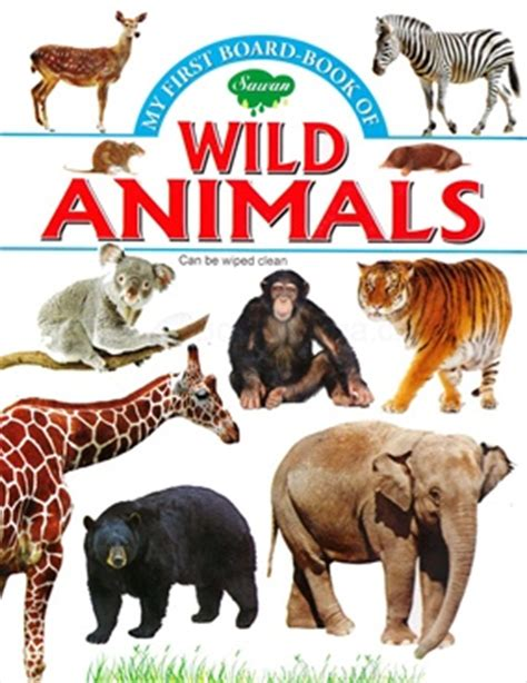 in search of sanctuary wildlife my books animal books images