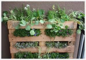 Herb Garden Diy Transformed Hanging Herb Garden Camille Styles