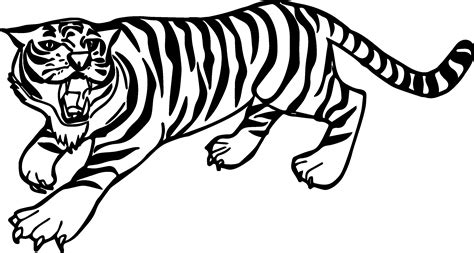 tiger color angry tiger coloring pages wecoloringpage