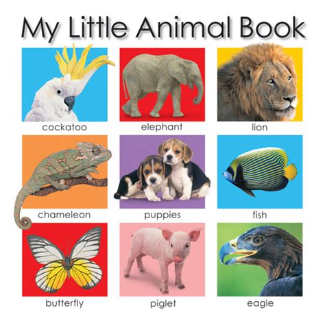 picture books about animals my animal book roger priddy macmillan