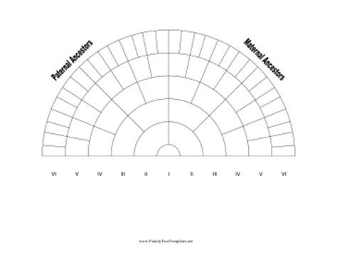 genealogy fan chart template 6 generation family tree fan chart template