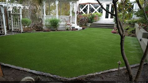 astro turf backyard turf backyard home interior eksterior