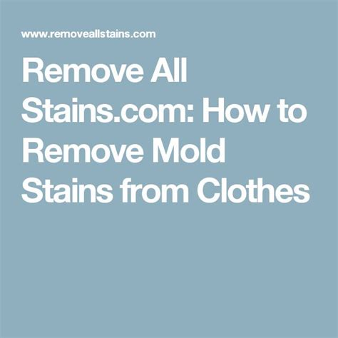 how to remove musty smell from bathroom 25 best ideas about remove mold stains on pinterest