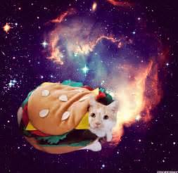 Spaceman Moving Burrito Cat In Space