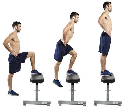 weighted bench step ups hiit exercise how to do reverse alternating lunges hiit