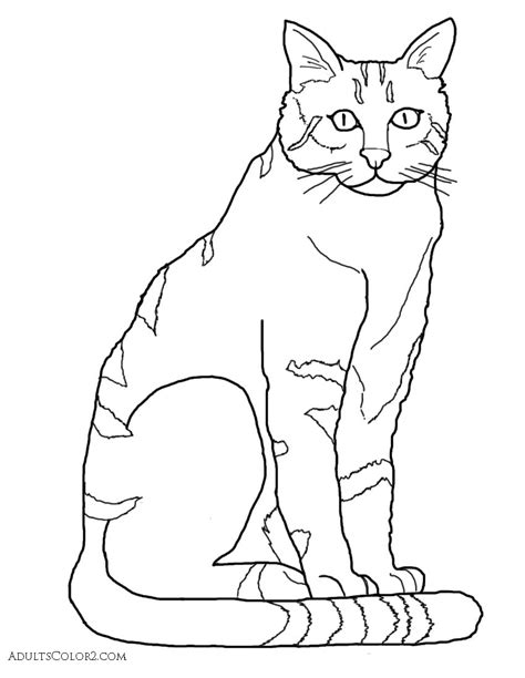 coloring book ktt coloring pages fascinating cat coloring pages pictures