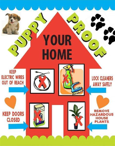 make a pet safety poster home safety poster ideas