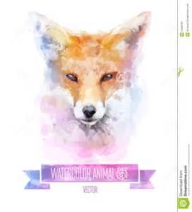 vector set of watercolor illustrations cute fox stock