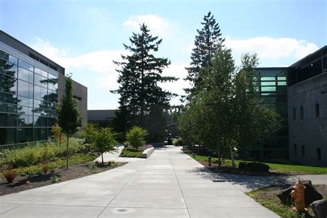 colleges in portland portland community college