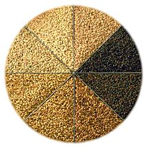 1 lb whole grains southern homebrew briess roasted barley unmalted 1 lb