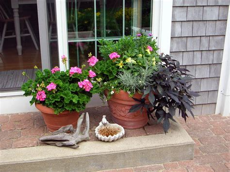 Decorating Patio With Potted Plants by How To Decorate Outdoor Pots Of Plants Home Decorating Ideas