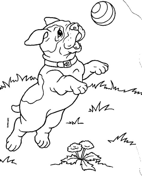 coloring pages of lab puppies lab puppy colouring pages