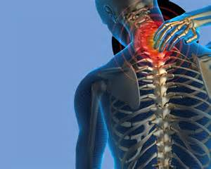 Chiropractor Description by Fighting Back And Neck Through Chiropractic