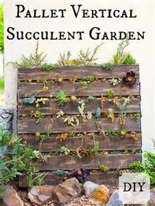 Vertical Succulent Garden Diy Pallet Vertical Succulent Garden Blogher