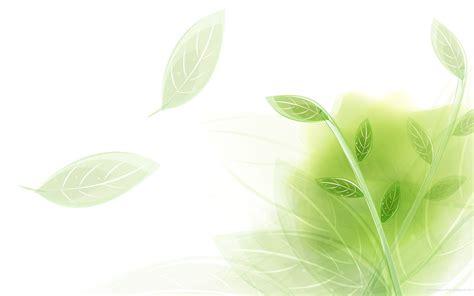 Dlite Green Molly vert clair fond d 233 cran hd