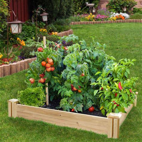 dos  donts   raised garden bed garden club