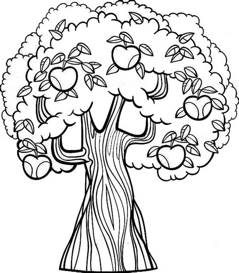 trees more coloring book books tree coloring pages dr