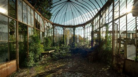 wallpaper of green house abandoned greenhouse wallpaper no 324299 wallhaven cc