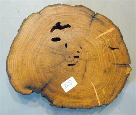 osage orange art craft plaque wood carving mounting