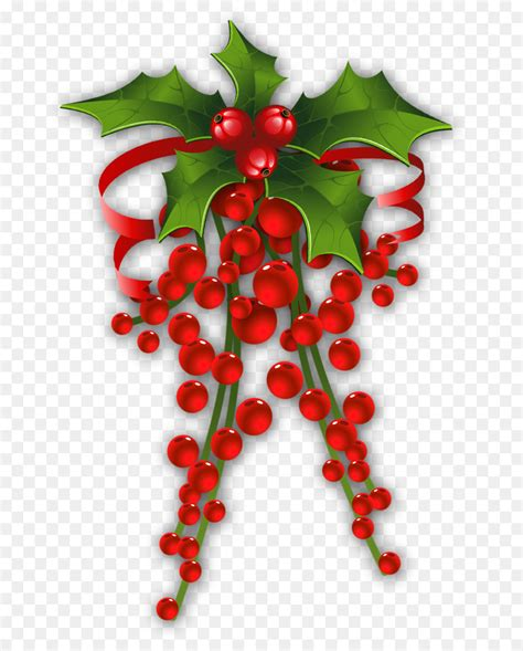 mistletoe christmas common holly clip art mistletoe cliparts transparent png