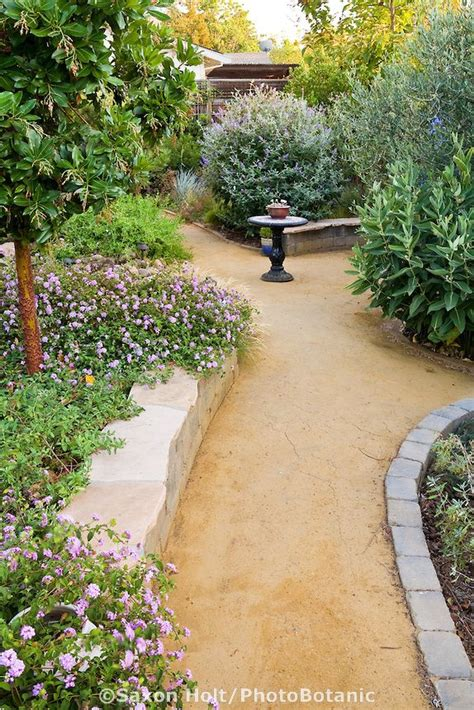 california backyard 53 best granitic sand or decomposed granite images on backyard ideas garden ideas