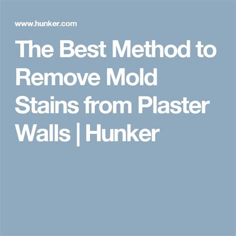 best way to remove bathroom mold best 25 remove mold stains ideas on pinterest mildew