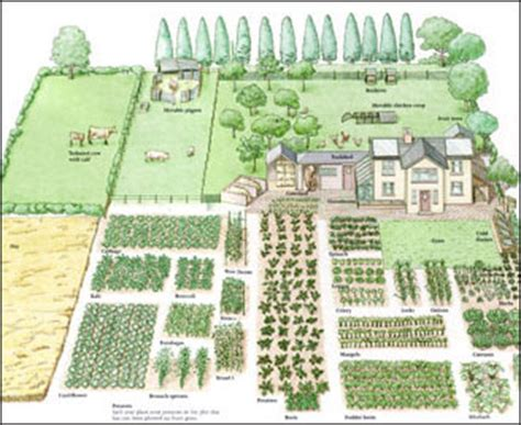 how to plan a garden layout zagospodarowanie dzia蛯ki poradnik dzia蛯kowca