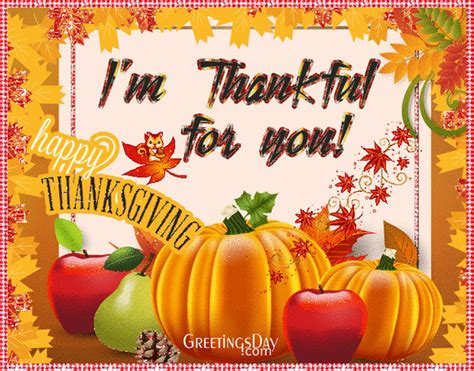 happy thanksgiving images  gif  funny pictures  quotes    share