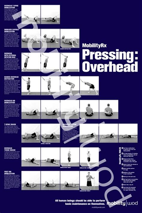 Mobility Wod Front Rack by Mobilitywod Positioning Posters Crossfit