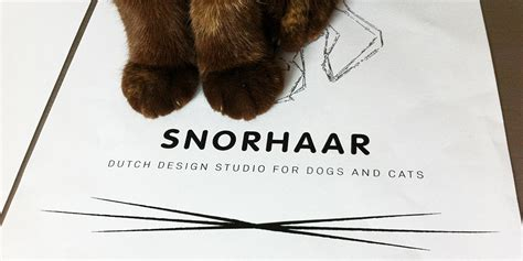 Design Inspiration by Lab Archives Snorhaar