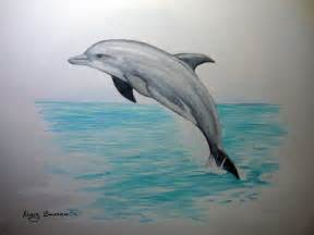 what color is a dolphin colored pencil the aspiring illustrator page 2