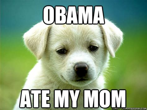 Obama Dog Meme - play with me please misc quickmeme