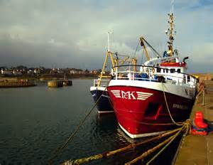 sea fishing boat license ireland fishing boats bangor harbour 169 rossographer geograph