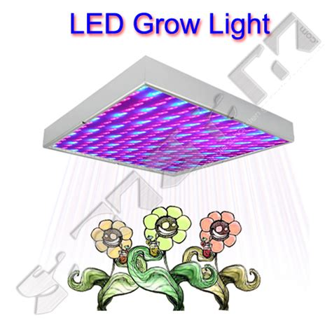 beleuchtung pflanzen led led lichtplatte zur k 252 nstlichen beleuchtung pflanzen