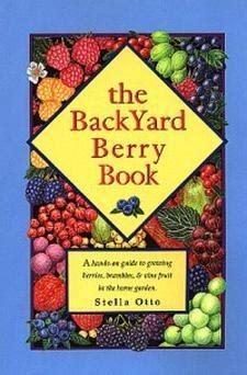 backyard berries plant berries save money