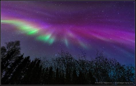 northern lights aurora borealis fairbanks alaska aurora borealis fairbanks alaska auroras northern