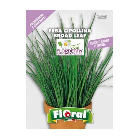 semi erba giardino fioral semi di erba cipollina aromatiche aromi orto