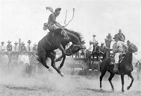 horses that buck the story of chion bronc rider bill smith the western legacies series books the world s catalog of ideas
