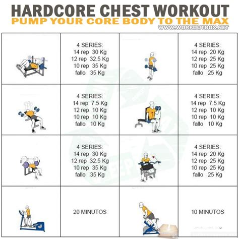 chest workout your the max bicep