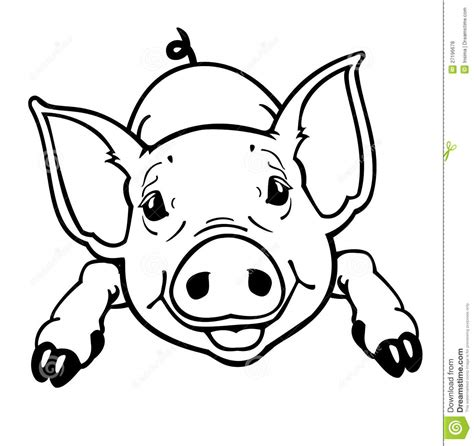 pig clipart 1 royalty free stock illustrations vector piglet black and white royalty free stock photos image